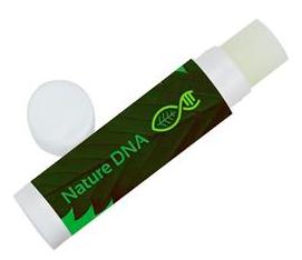 custom branded cbd oil lip balm
